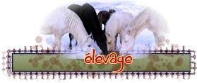 ico_elevage